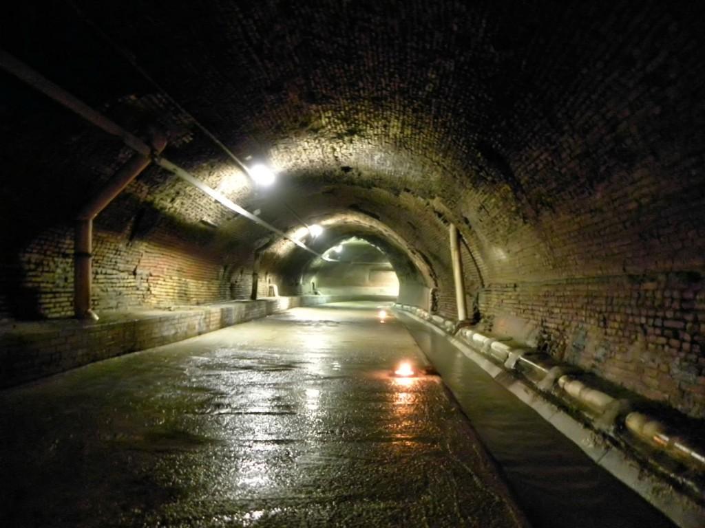 Tour sotterraneo a Bologna
